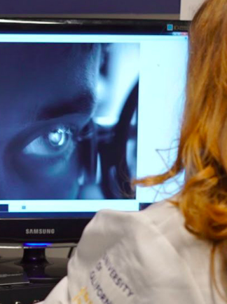 Photo of researcher looking at computer screen.